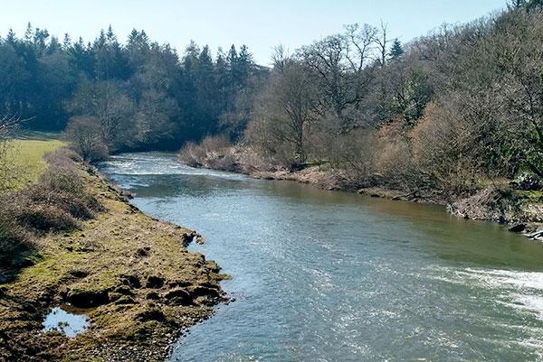 River Torridge near Torrington