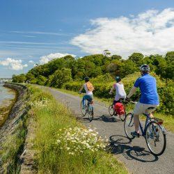 Family cycle along Tarka Trail near Instow